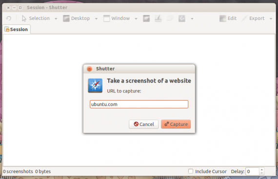 shutter website 2