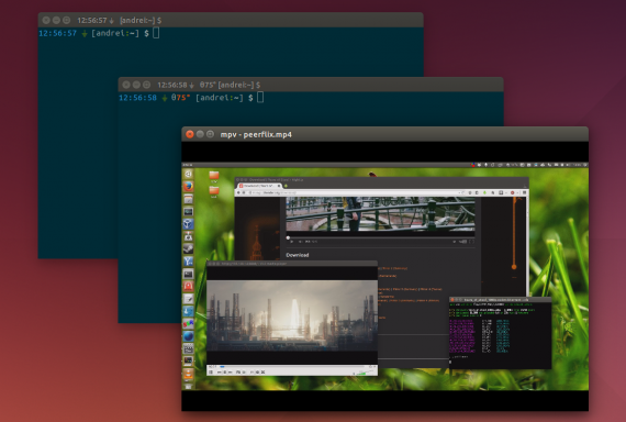 ubuntu14.04-borderless-window-decorations