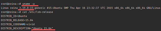 Kernel version for Docker.