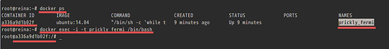 Use Docker Exec command.