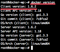 Docker_Version