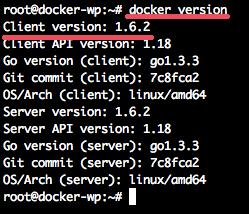 Docker_Version