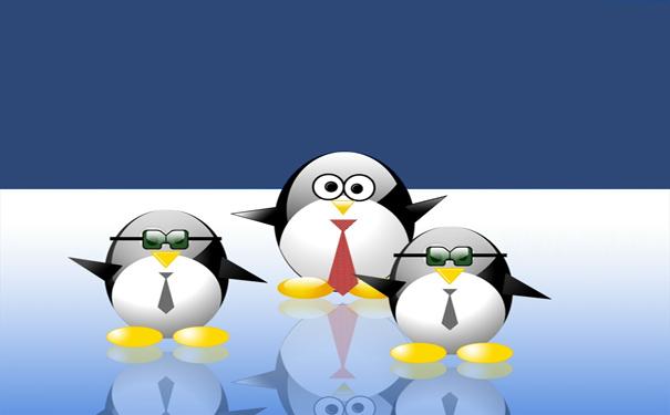 真实记录我入门学习Linux系统的经历