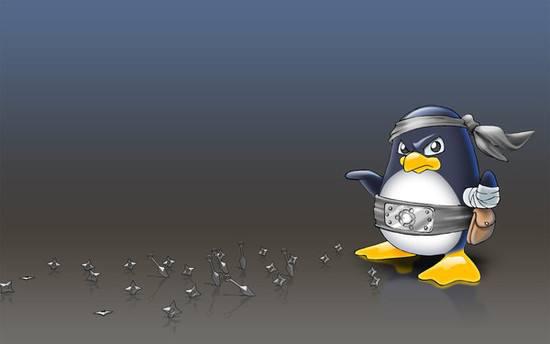 从超级菜鸟变成Linux系统高手