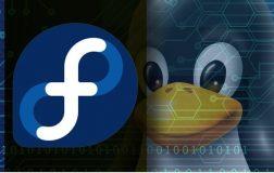 红帽子发行面向用户的Linux新版本Fedora 27