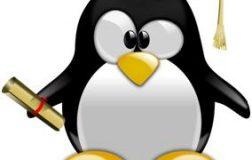 我与Linux系统的交集