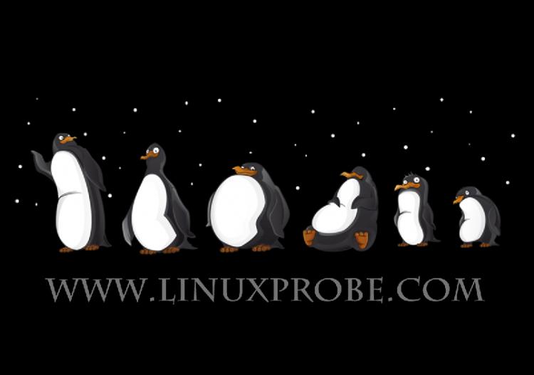 Linux系统运维成长记