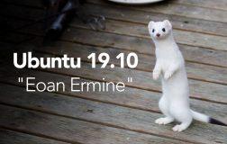 "Ubuntu 19.10 代号泄露""Eoan Ermine"""