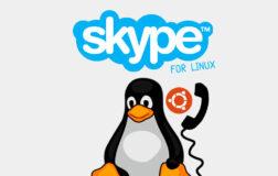 Skype Snap在6个月内获得首次更新,并增加了一个新图标