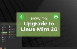 如何升级到Linux Mint 20(分步指南)