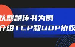 TCP 和 UDP 怎么选?让麒麟传书告诉你